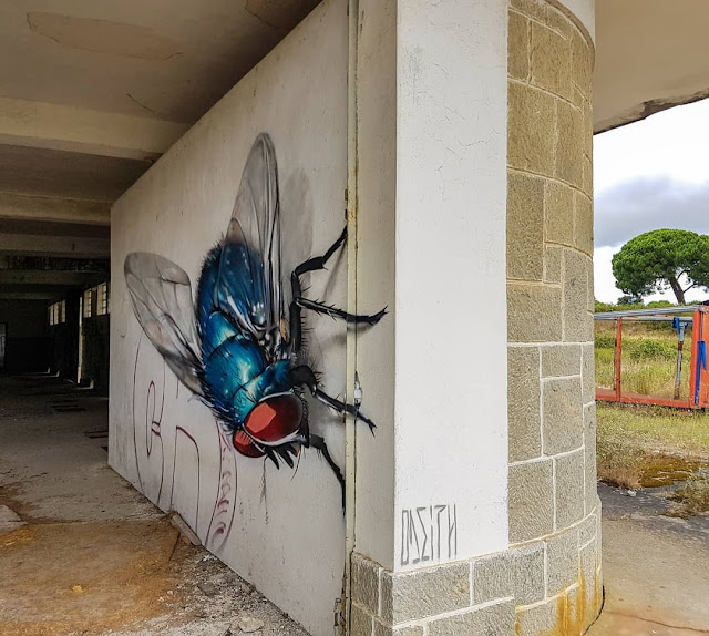 廃墟に巨大な昆虫が現れた?立体的なリアルな昆虫アート【a】 ストリートアーティスト オディス アナモフィック