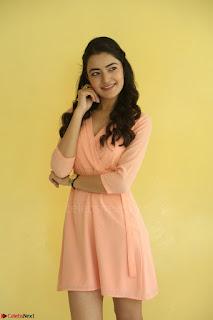 Rukshar Mir in a Peachy Deep Neck Short Dress 109.JPG