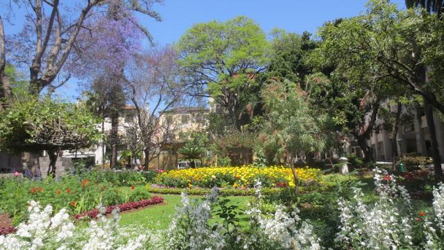 Funchal - bunte Blütenpracht im Jardim Municipal do Funchal