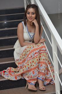 Telugu Actress Anu Emmanuel New Stills in Beautiful White Long Dress  0067.JPG