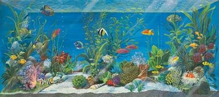 Acquario by Cuccato, Isabella- Fine Art Print on CANVAS : 74 x 33 Inches