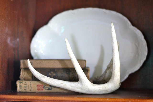 antler and antique books