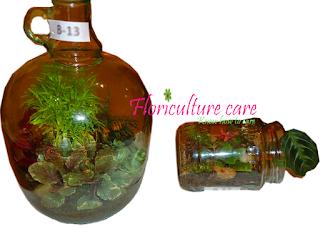 Bottle-Garden