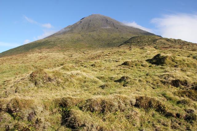 Monte Pico