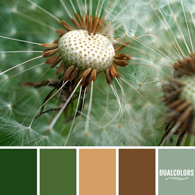 color_paleta_195
