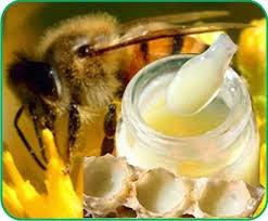 Sữa ong chúa tươi nguyên chất là sự lựa chọn an toàn nhất hiện nay