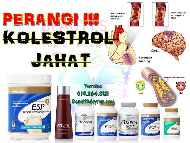 ubat kolestrol