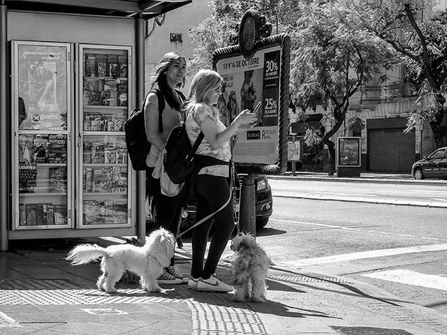 Dos mujeres con dos mascotas esperando cruzar la calle.