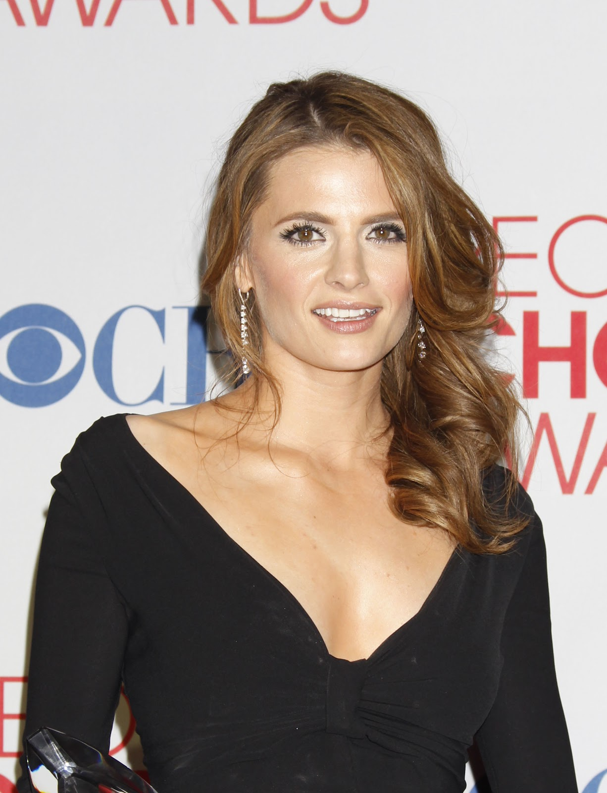 50 best Stana Katic Hairstyle images on Pinterest | Kate ...
