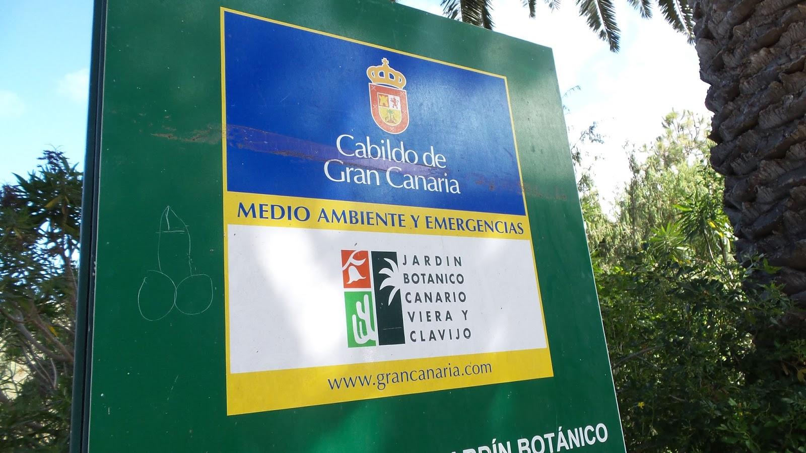 Gran canaria reise info der botanische garten jard n bot nico canario viera y clavijo - Jardin botanico canario ...