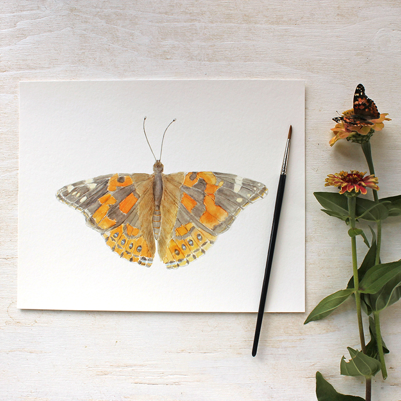 Painted lady butterfly watercolor print by Kathleen Maunder of Trowel and Paintbrush