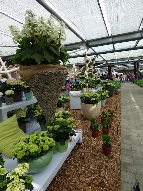 Visit Keukenhof Flower Pavilions Holland