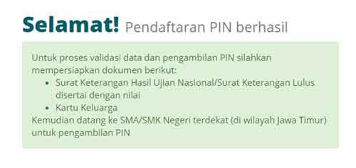 PPDB Online Pendaftaran PIN Berhasil