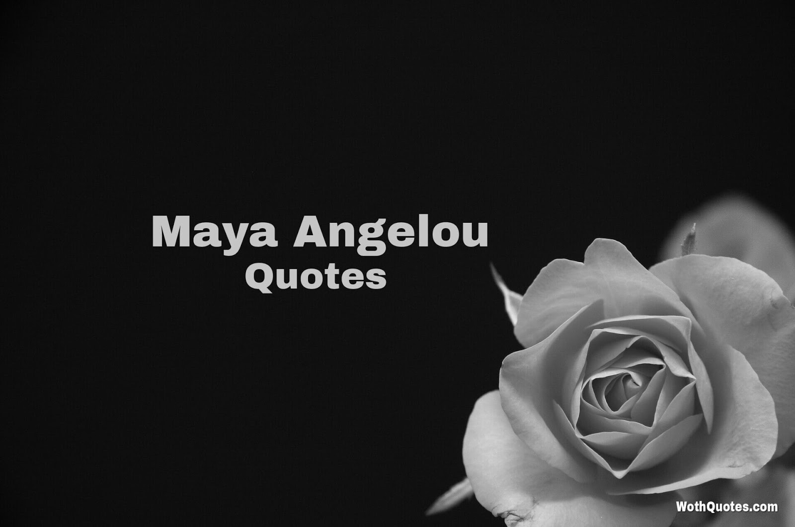 Maya Angelou Quotes And Sayings: Maya Angelou Quotes - WothQuotes
