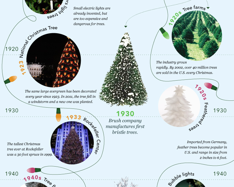 History Of Christmas Tree.Teaching Pinetree The History Of Christmas Trees