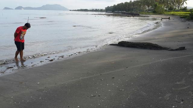Keindahan pantai alami