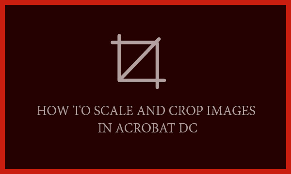 How to Scale and Crop Images in Acrobat DC