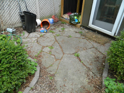 Cabbagetown Toronto Spring Backyard Garden Cleanup Before by Paul Jung Gardening Services a Toronto Gardening Company