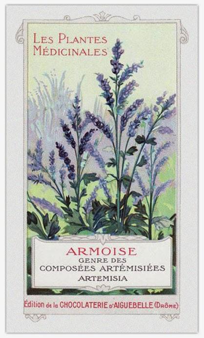 Héraldie: Les plantes médicinales en chromolithographies anciennes