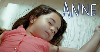 Το τραγικό φινάλε της σειράς ANNE. Το τελευταίο επεισόδιο