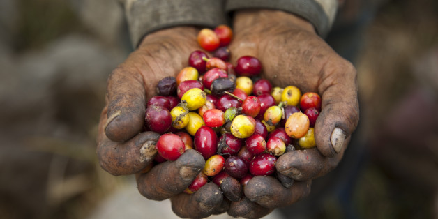 Clergy Confidential: Fair Trade Coffee Companies: A List