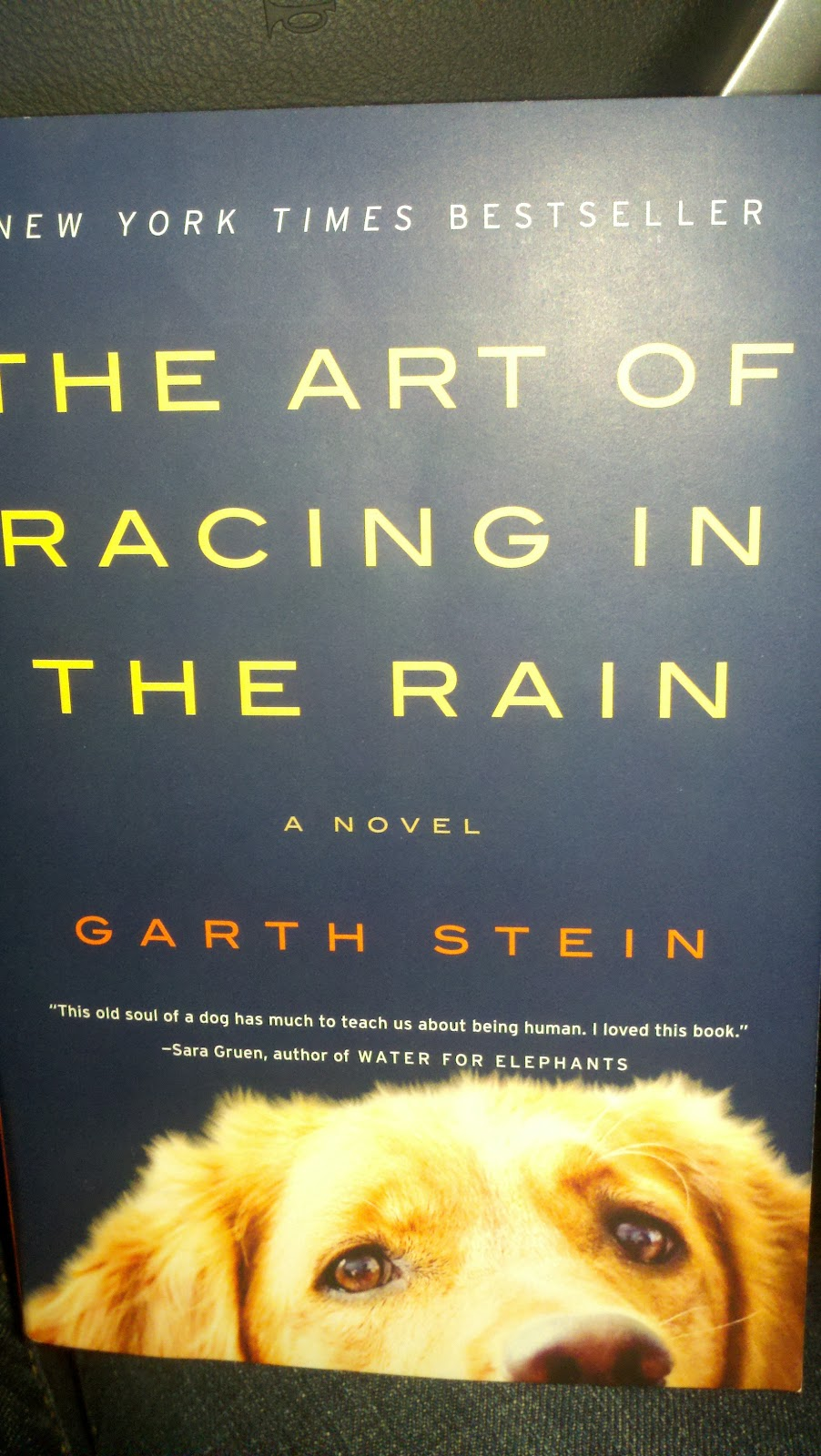 The Art Of Racing In The Rain: Run: The Art Of Racing In The Rain