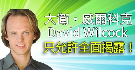 大衛·威爾科克—只允許全面揭露