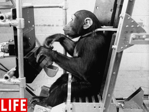 Heroes of Space: Ham the chimpanzee |