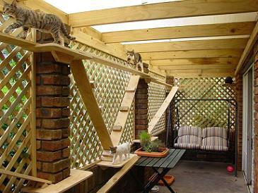 Outdoor Cat Enclosure Cheap