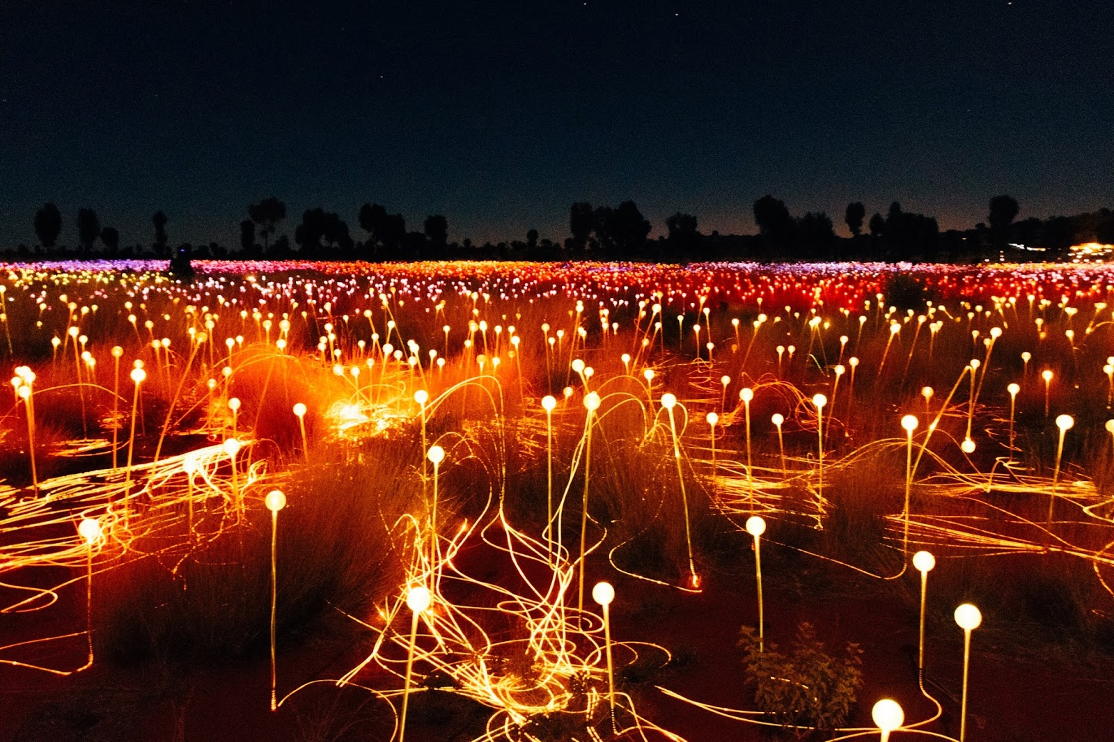 the field of light uluru