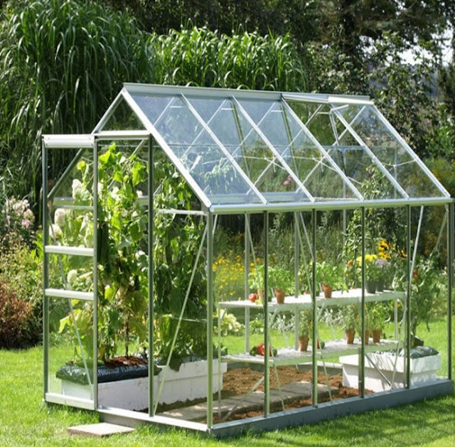 A greenhouse made of low iron glass