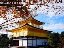 2015年11月下旬京都紅葉速報(更新:11月29日)