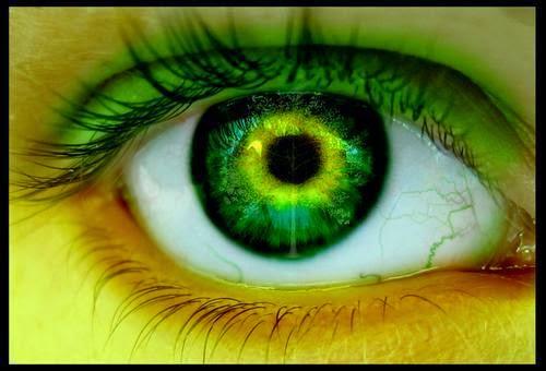 ojos-Zora