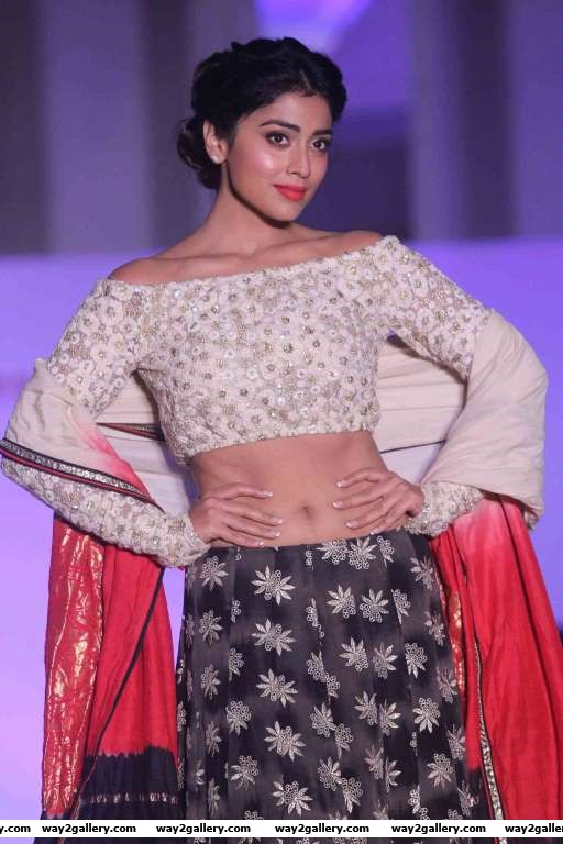 Shriya Saran walked the ramp for Terry Fox India Committee