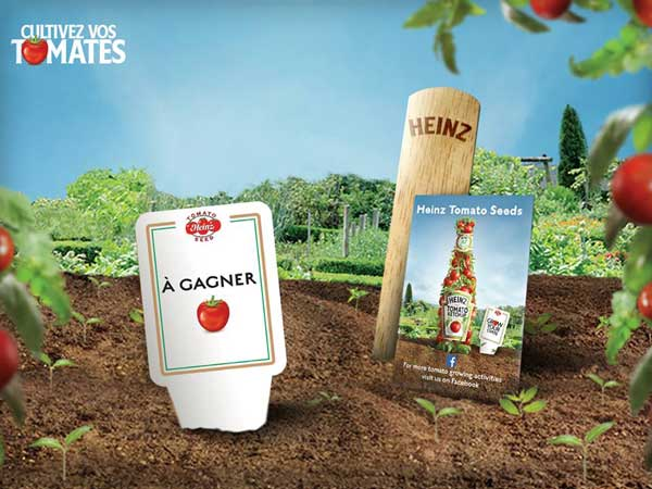 Semi di pomodoro Heinz