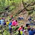 Percorrer o Caminho Real 23 com concerto bónus na floresta