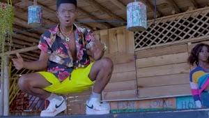 Download Video | The Vibe - Naiyee