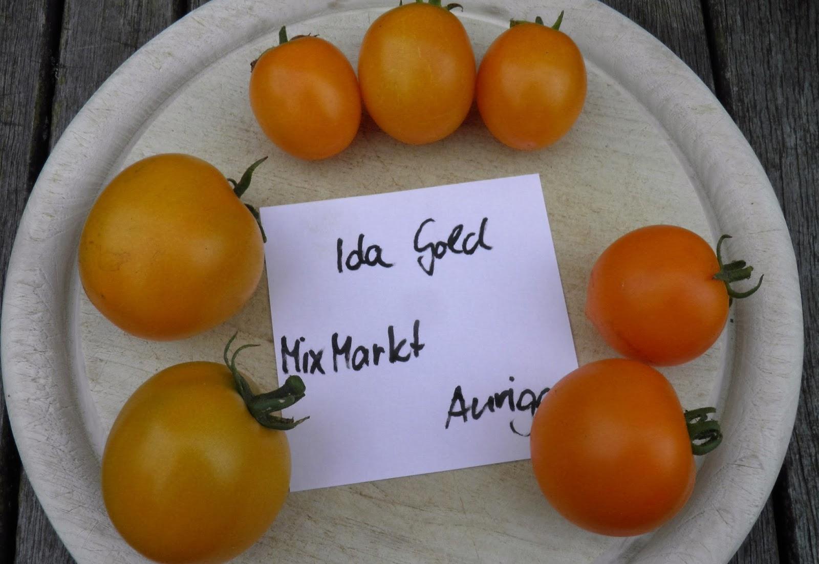 rosendame macht was tomaten aus unserem garten. Black Bedroom Furniture Sets. Home Design Ideas
