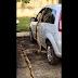 Cobra é flagrada 'escalando' carro no Pará