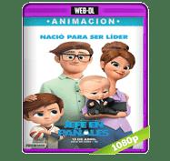 Un Jefe en Pañales (2017) Web-DL 1080p Audio Dual Latino/Ingles 5.1