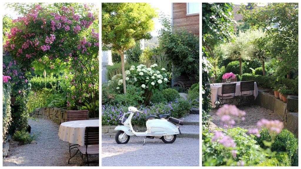 Ein Schweizer Garten: Offener Garten 2016