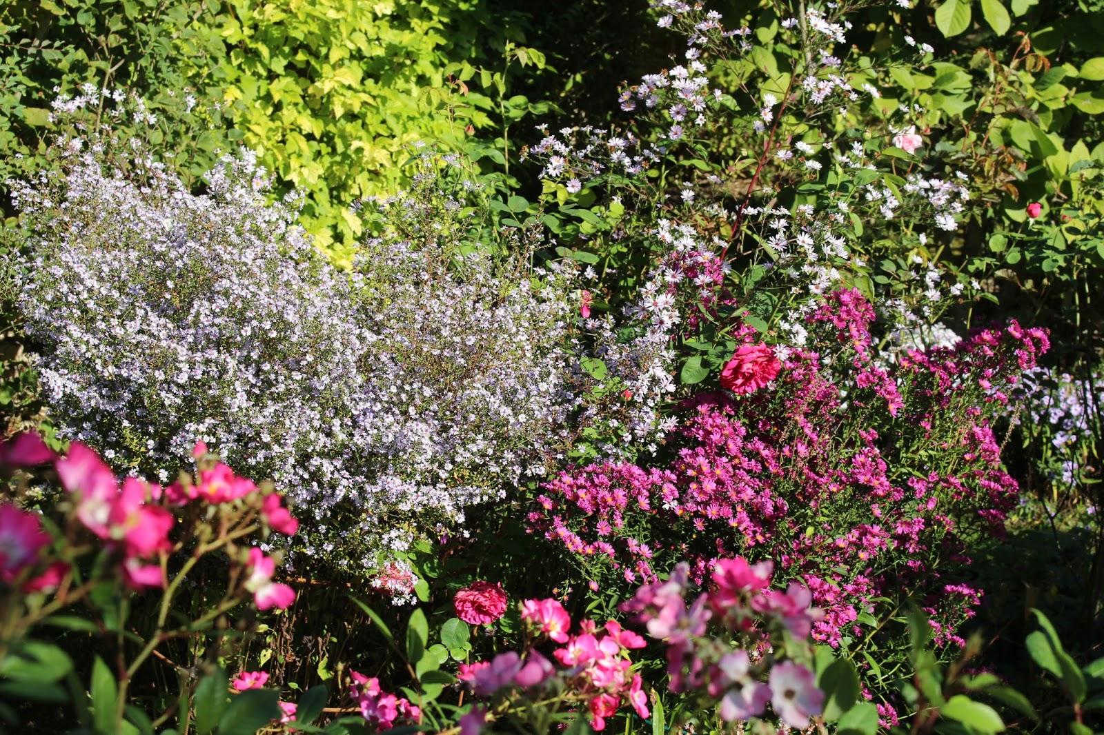 Notre jardin secret for Axelle red jardin secret