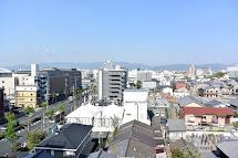Quien Le Gusta Viajar Japon - Kyoto Sakura