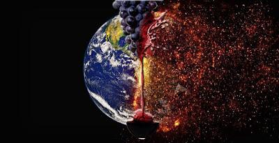 Il global warming sta cambiando il gusto del vino