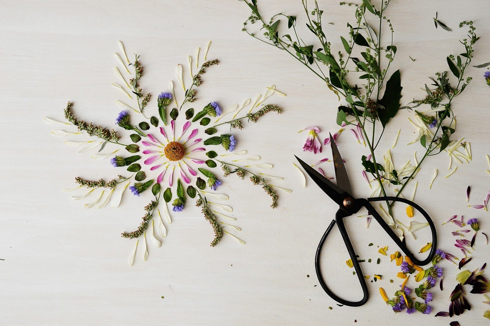 DIY Nature Mandalas | Motte's Blog
