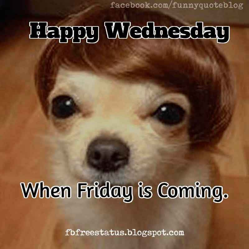 Happy Wednesday Memes, Happy Wednesday, When Friday is Coming.