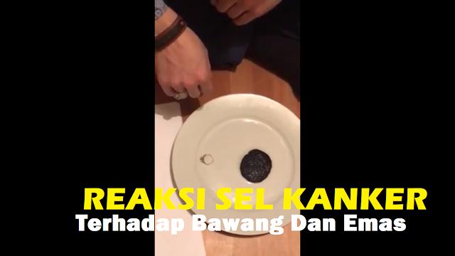 Dibumbui Audio Ayat Suci, Video Reaksi Potongan Kanker Terhadap Emas dan Bawang Putih Viral Hebohkan Netizen....