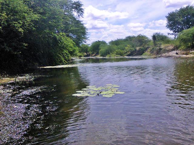Barragem de Rogério