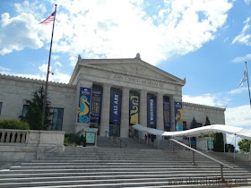 Learn at the Shedd Aquarium, in person or online