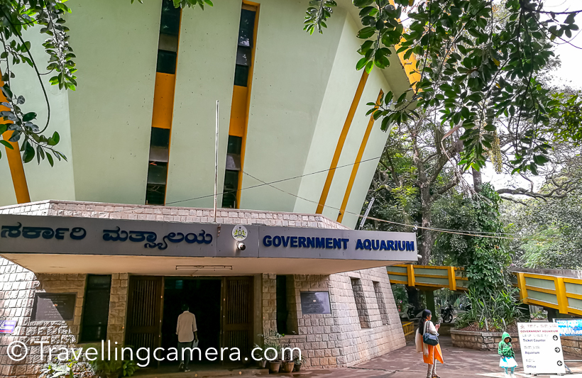 Government Aquarium, Banglore - A great place to visit with Kids